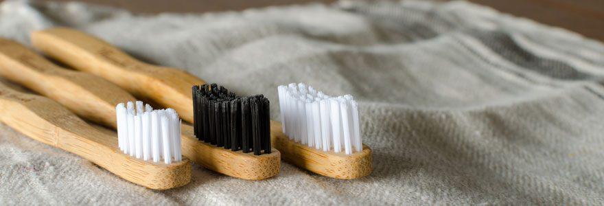 Gestes écologiques : opter pour une brosse à dent en bambou
